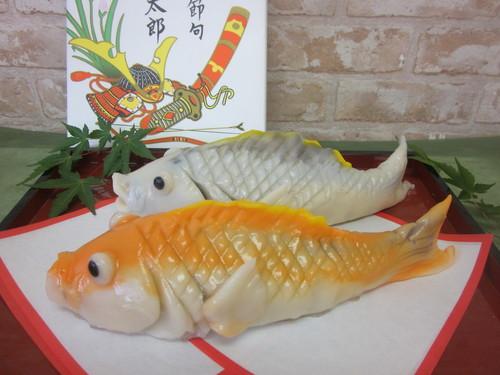 たち鯉.JPG